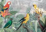 Papegaaien jungle fotobehang