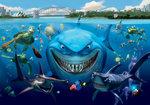 Finding Nemo fotobehang L Bruce