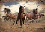 Wilde paarden fotobehang XL