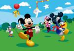Mickey Mouse fotobehang Park