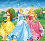 Disney Princess vlies fotobehang _