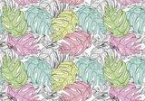 Monstera bladeren behang pastel