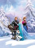 Frozen behang Winter Land