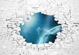 3D Muur vlies behang Astronaut