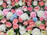 Kleurrijke bloemen fotobehang