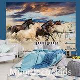 Paarden fotobehang In Galop V3