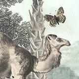 Behangcirkel Utopia dieren