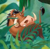 Lion King Jungle fotobehang XL_