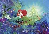 Ariel fotobehang Castle