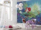 Ariel Castle fotobehang 8-4021