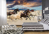 Paarden fotobehang Galop