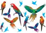 Papegaaien muurstickers