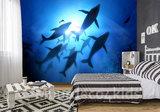 onderwater behang walvis
