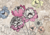 Bloemen fotobehang Pioenrozen