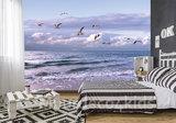 Strand behang Zeemeeuwen