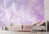 Paardenbloem fotobehang Lila_