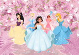 Prinsessen fotobehang