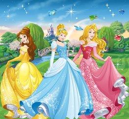 Disney Princess vlies fotobehang