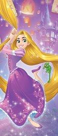 Rapunzel deurposter