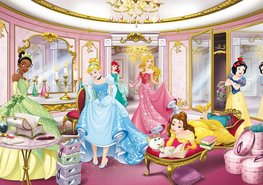 Disney Princess behang Mirror
