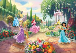 Disney Princess behang Park