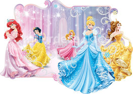 Disney Princess fotobehang 3D-effect