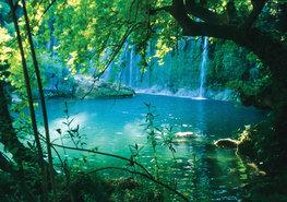 Waterval in bos fotobehang