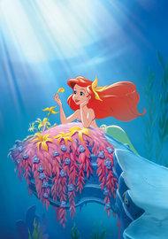 Ariel fotobehang Diep in de zee