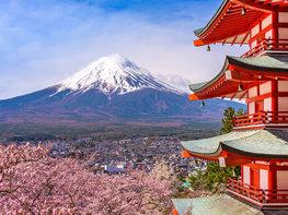 Berg fotobehang Fuji XL