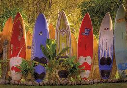 Surfplanken fotobehang Maui