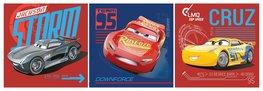 Disney Cars canvas NW