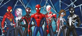 Spiderman behang poster Friends