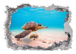 Onderwater 3D muursticker Zeeschildpad