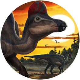 Behangcirkel dinosaurus - Corythosaurus