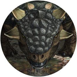 Behangcirkel dinosaurus - Tarchia