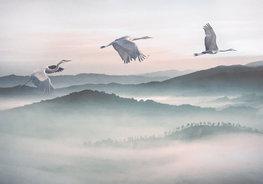 Kraanvogel behang Mystic Cranes
