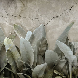 Botanisch behang Bananenbladeren II
