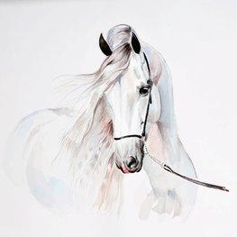 Paarden behang Aquarel paard