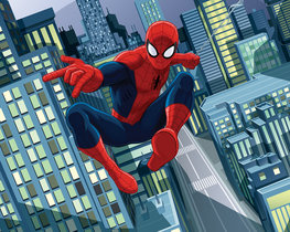 Spiderman behang - WT