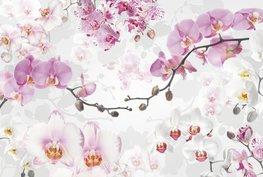 Fotobehang Allure - Orchideeën