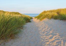 Strand fotobehang Sandy Path