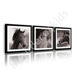 Paarden canvas set zwart/wit