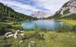 Paradise Lake fotobehang - SH