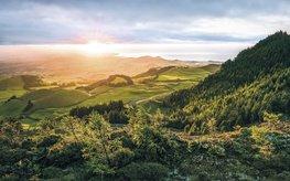 Paradise Island fotobehang - SH
