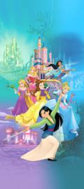 Disney Princess deurposter