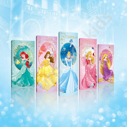 Disney Princess canvas Gala 5-delig