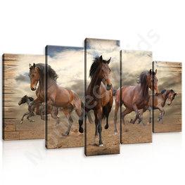 Paarden canvas 5-delig