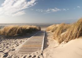 Strand VLIES fotobehang Loopplank XXXL