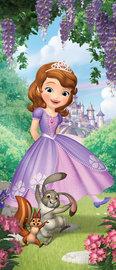 Sofia het prinsesje deurposter