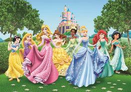 Disney Princess fotobehang AG